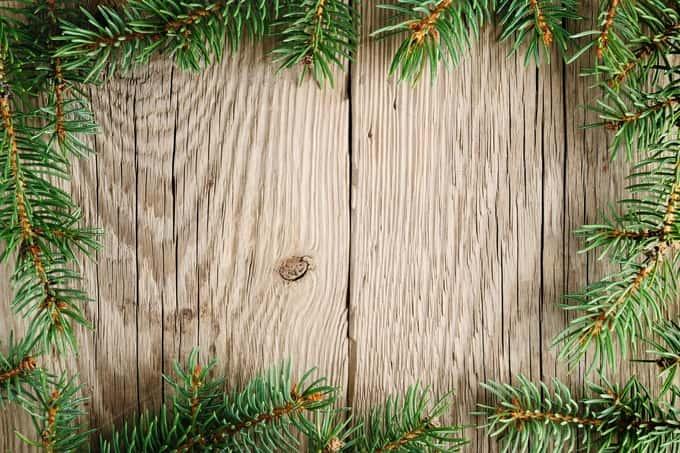 December 2015 Bonus Issue: Holiday Gift Guide